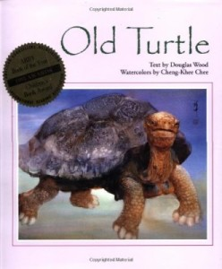 Old Turtle book cover