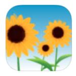 Grateful App