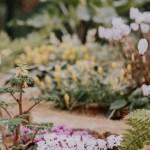 Summer Blessings: Gardens