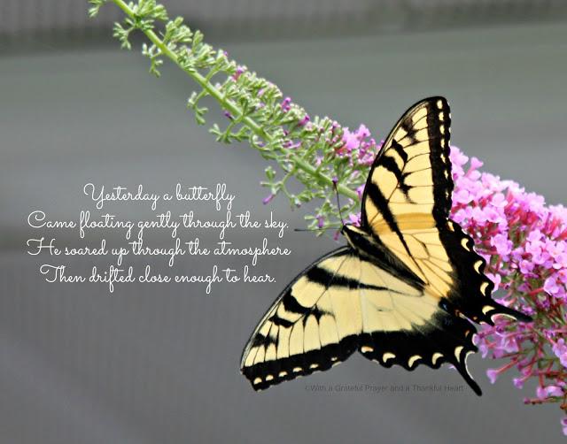 Yesterday A Butterfly Grateful Prayer Thankful Heart