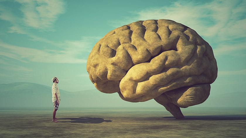"""""""Am dreptate!"""" Cum funcționează creierul…"""
