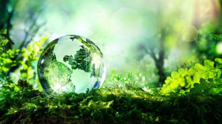 natura, terra,