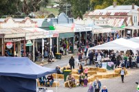 General view of the Fraser Street Book Bazaar at the 2017 Clunes Booktown Festival. Photograph by Chris Hopkins