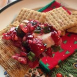 Cranberry Salsa and Cream Cheese Dip