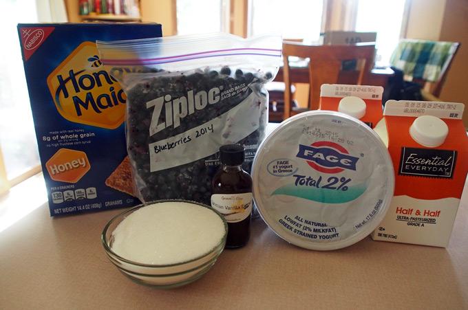 Blueberry-Graham-Frozen-Yogurt-2