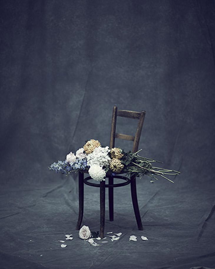 In Bloom by Jason Hetherington (1)