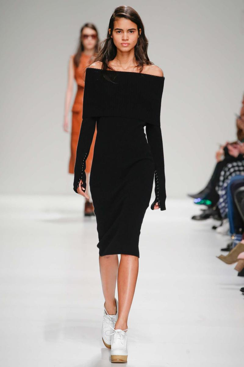 Sportmax Ready to Wear FW 2015 MFW (12)