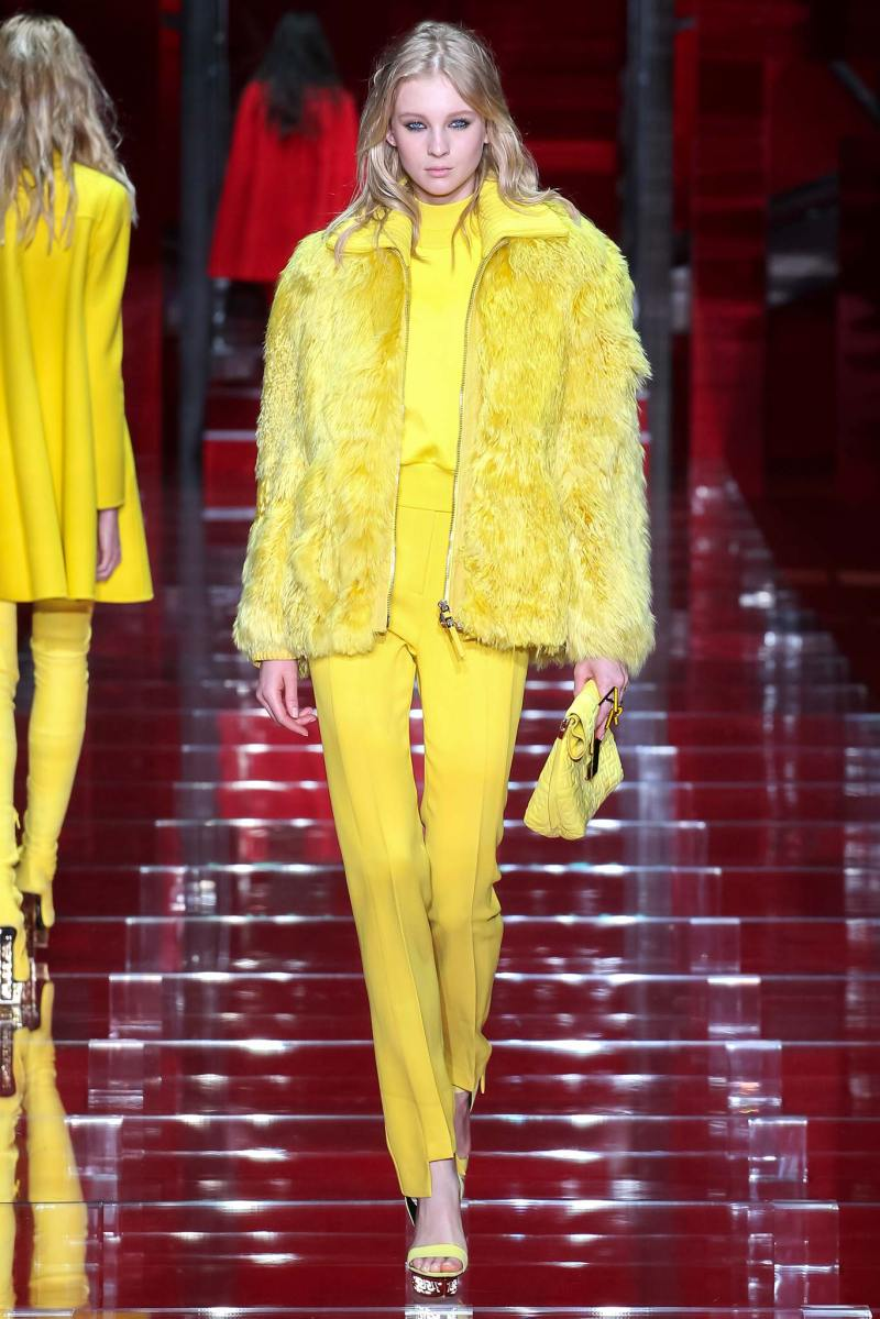 Versace Ready to Wear FW 2015 MFW (11)