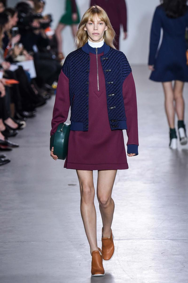 Cédric Charlier Ready to Wear FW 2015 PFW (7)