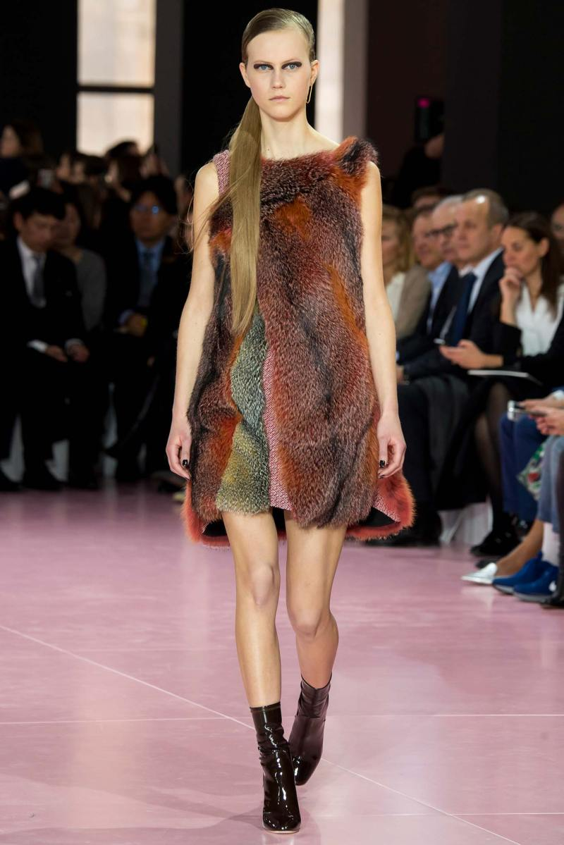 Christian Dior Ready to Wear fw 2015 pfw (34)