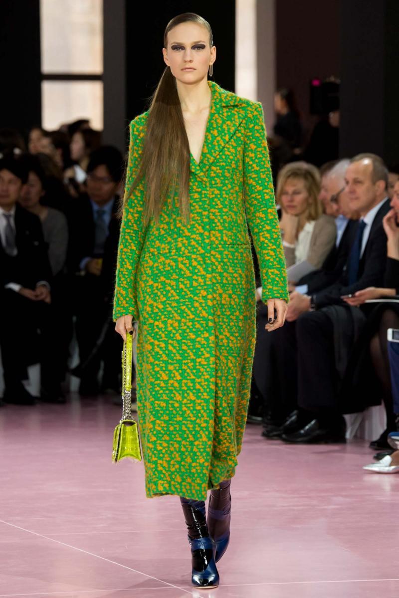 Christian Dior Ready to Wear fw 2015 pfw (43)