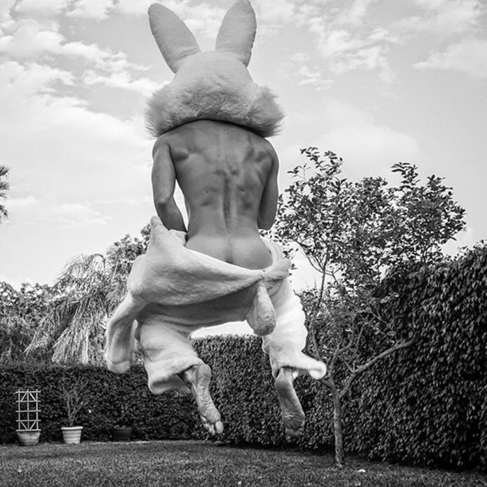 Rabbit in a Hat by photographer Scott Teitler