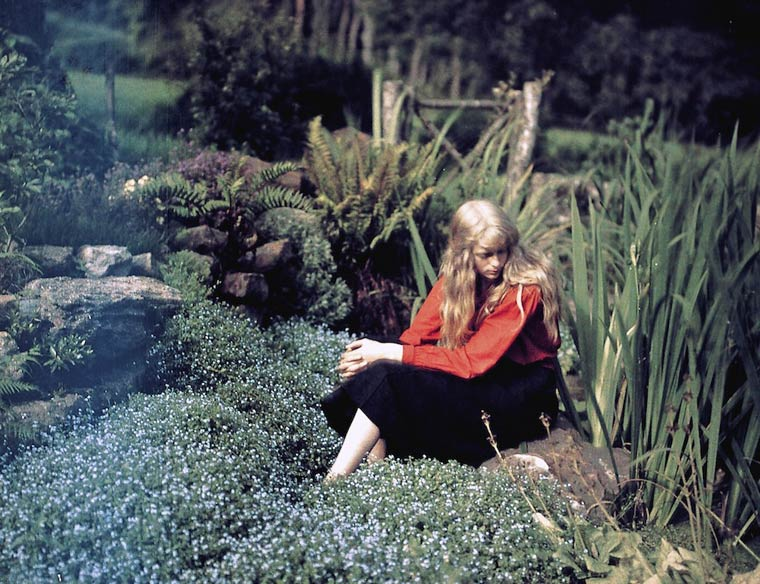 Some of the First Color Photographs by Mervyn O'Gorman  (4)