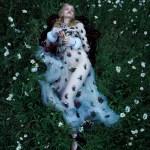 Stella Lucia by Camilla Akrans