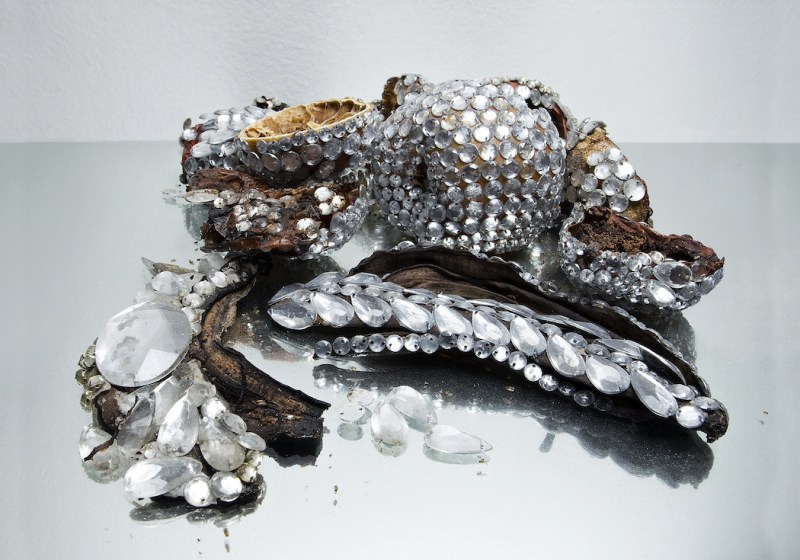 Jewel Encrusted Rotting Fruit by Luciana Rondolini (8)