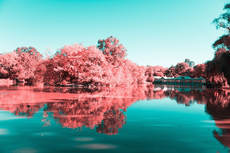 New York in Infrared Photography Series (11)