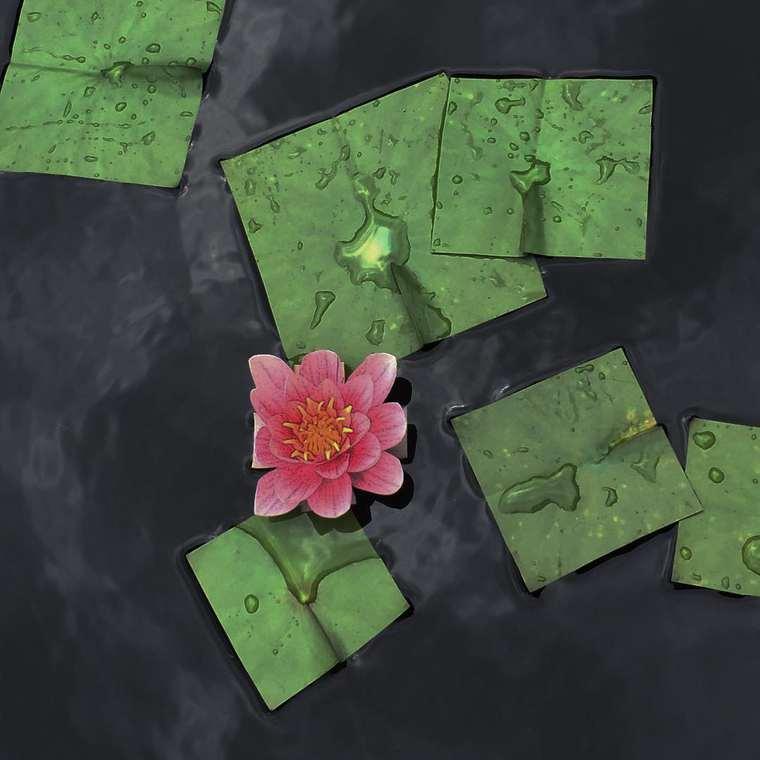 Bit Leaves by Baku Maeda (12)