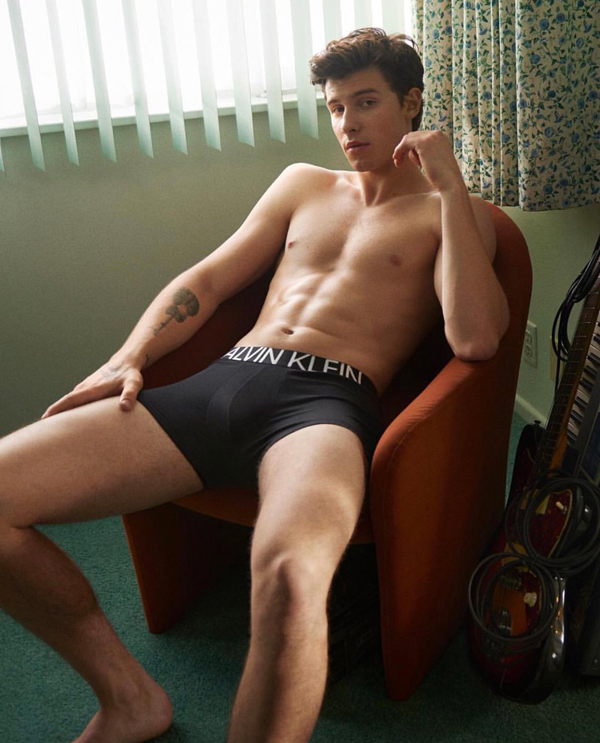 Shawn Mendes for Calvin Klein Statment 1981