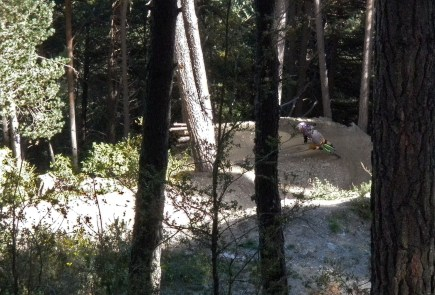 Andorre - vallnord- Commencal