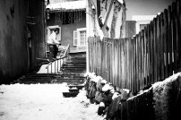 coline-ballet-baz-urban-project-2016-david-malacrida-68