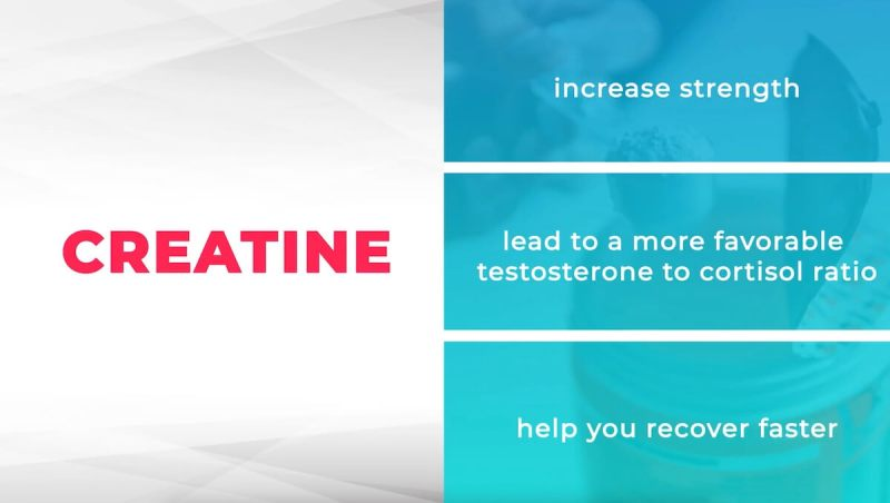 creatine-supplements-beneficial-for-strength-recovery-testosterone-cortisol-ratio
