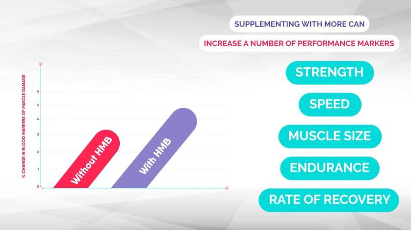 hmb-supplements-performance-markers-muscle-growth