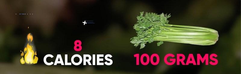 vegetable-burn-belly-fat-celery-8-calories-per-100-grams