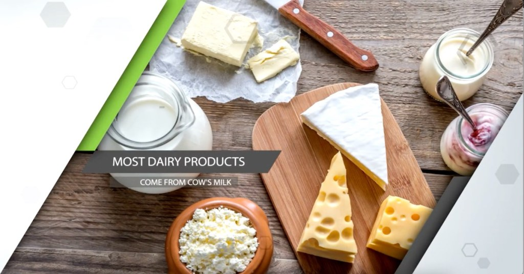 dairy-products-myths-you-believe