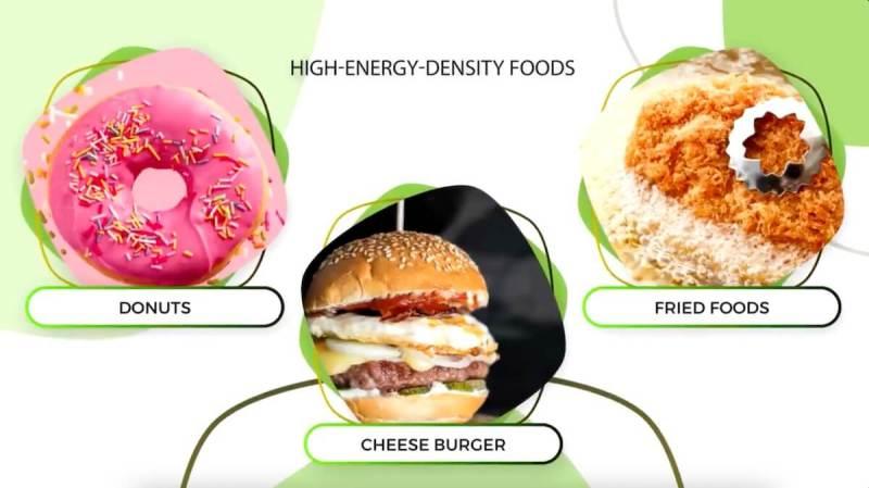 high-energy-density-food-diet