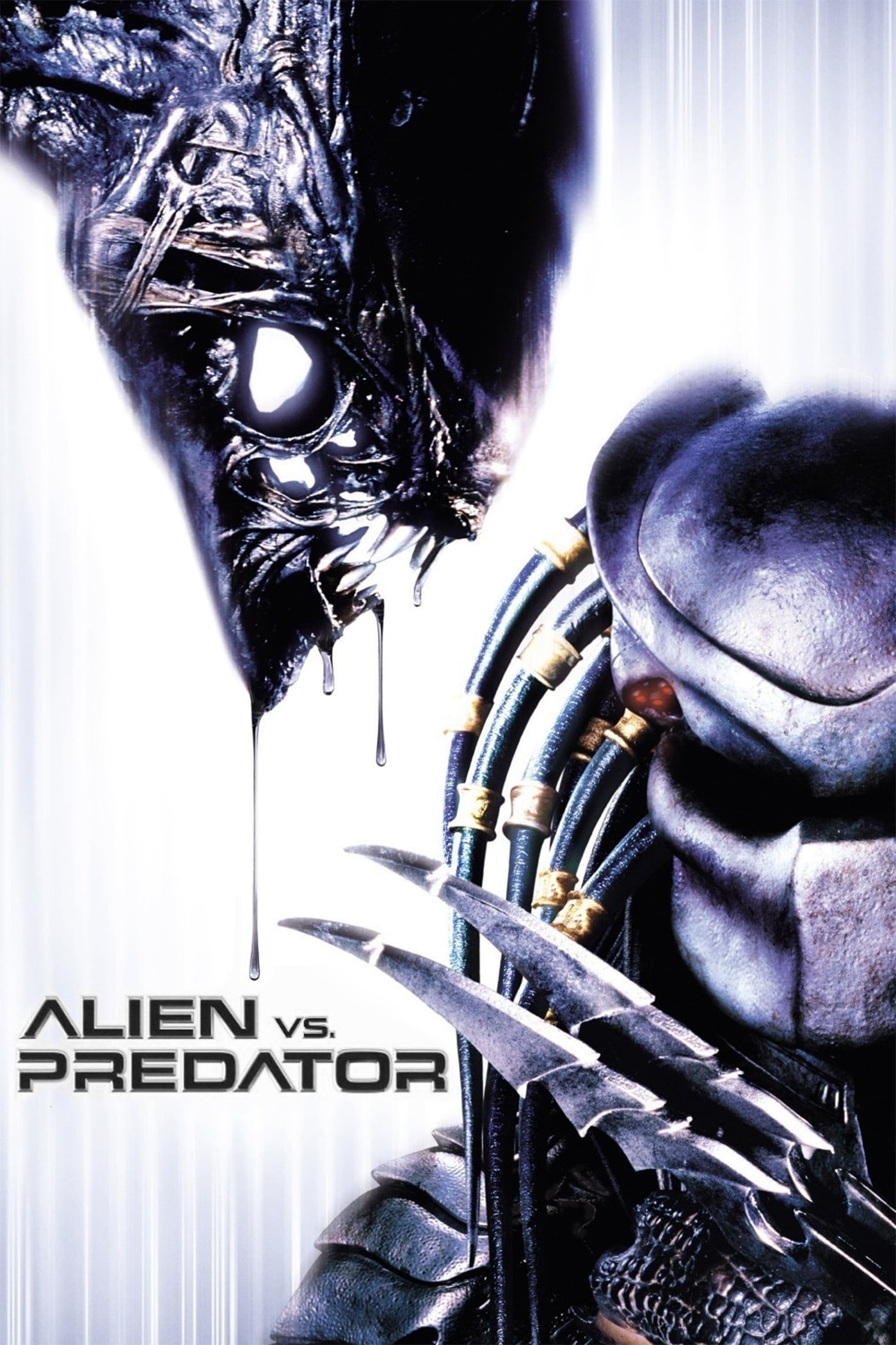 "Poster for the movie ""AVP: Alien vs. Predator"""