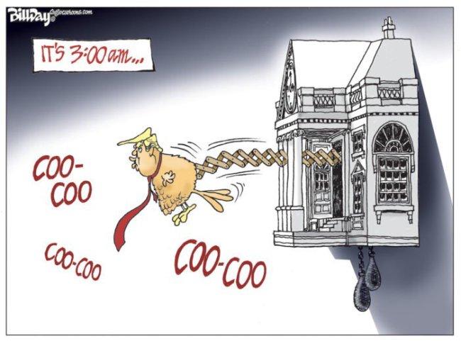 Trump 3 AM cuckoo clock.