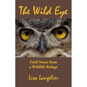 Wild Eye Cover
