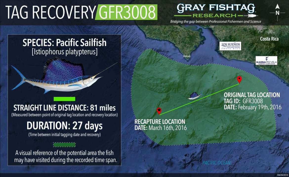GFR3008-Pacific-Sailfish-Recovery