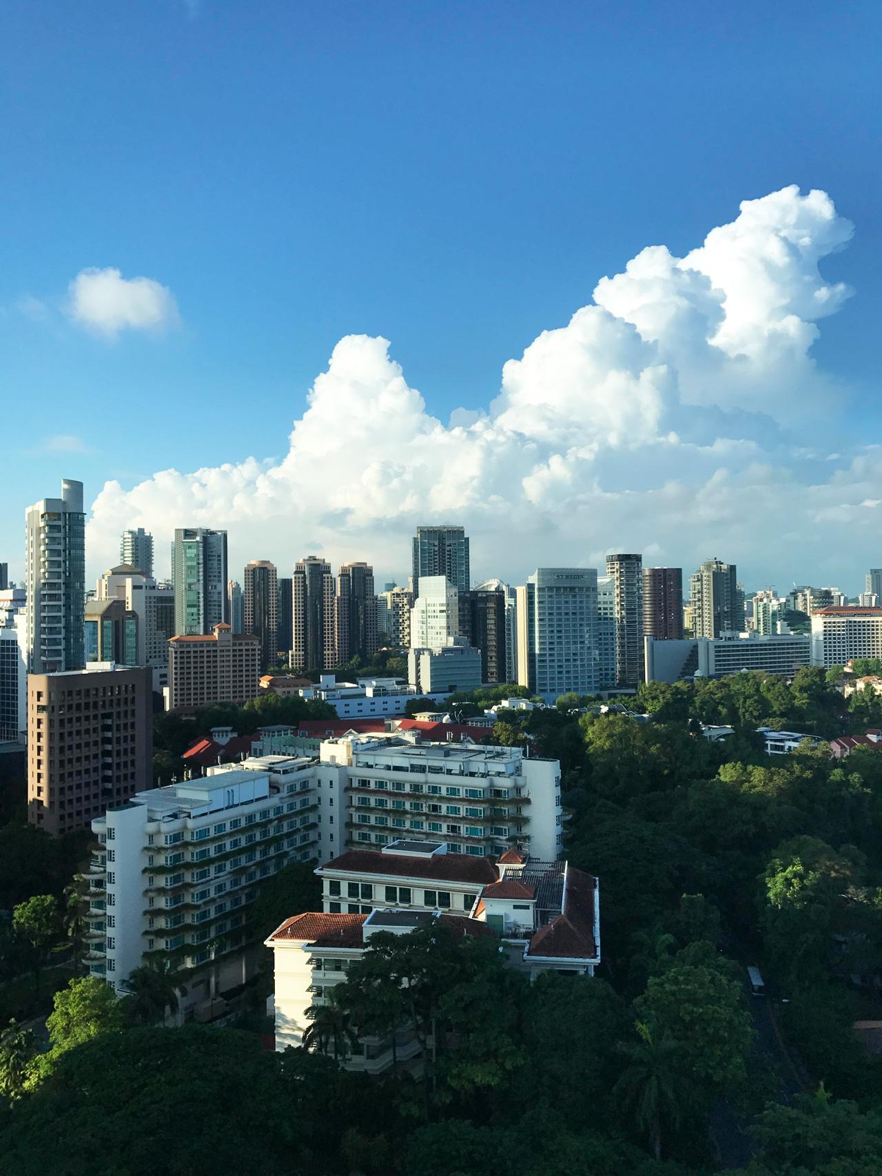 Singaporelead