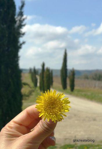 Castellina-in-Chianti