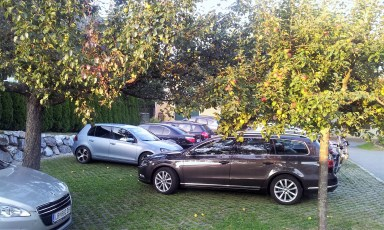The parking area with some low hanging fruits