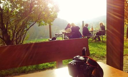The view onto the sun-laden garden