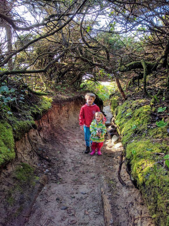Hobbit Trail Tunnel Height