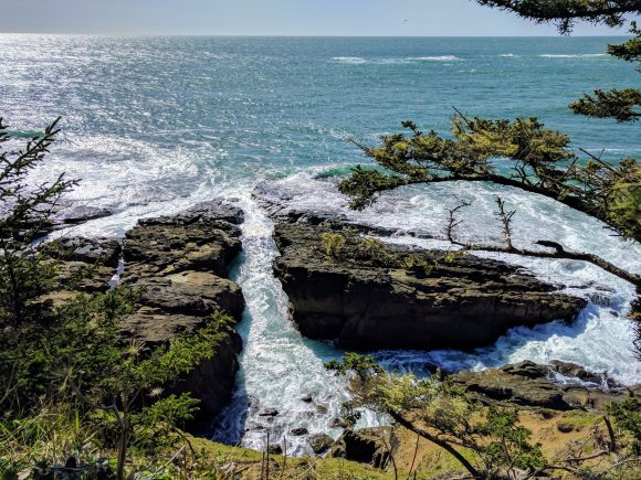 Shore View at Cape Arago State Park