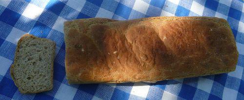 chlebek z koperkiem