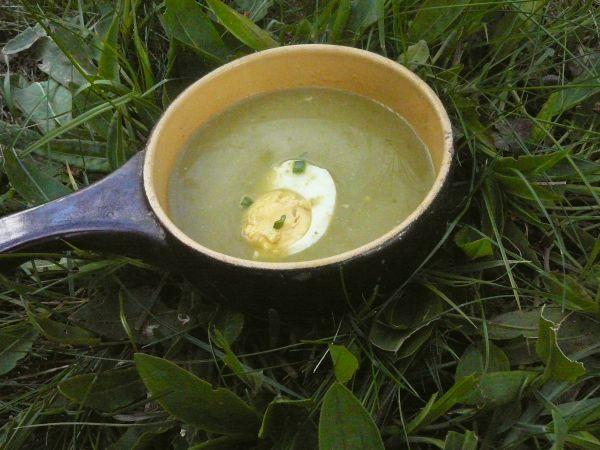 kremowa zupa szczawiowa1