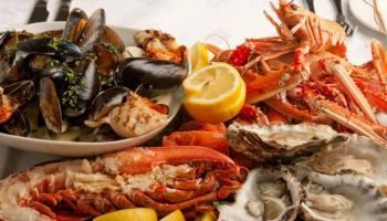 restoran u atini preporuka grčka hrana To Therapeftirio