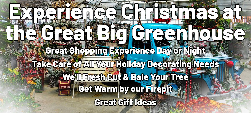 Experience Christmas at the Great Big Greenhouse. Great Shopping Experience Day or Night. Take Care of All Your Holiday Decorating Needs. We'll Fresh Cut & Bale Your Tree. Get Warm by our Firepit. Great Gift Ideas.