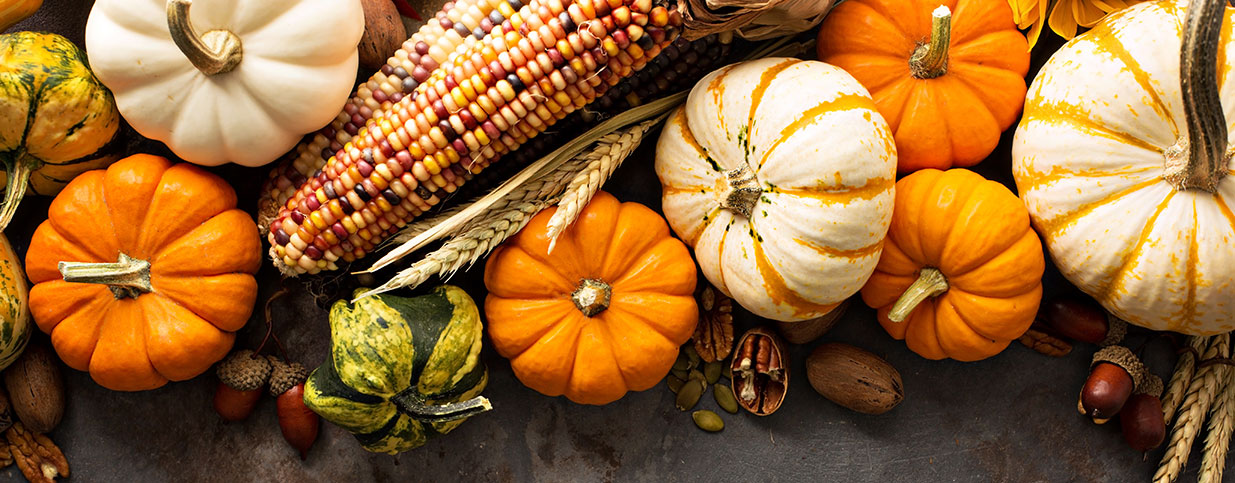 Fall fundraising with mini pumpkins and Indian corn
