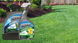 Messina Pulverize weed killing products