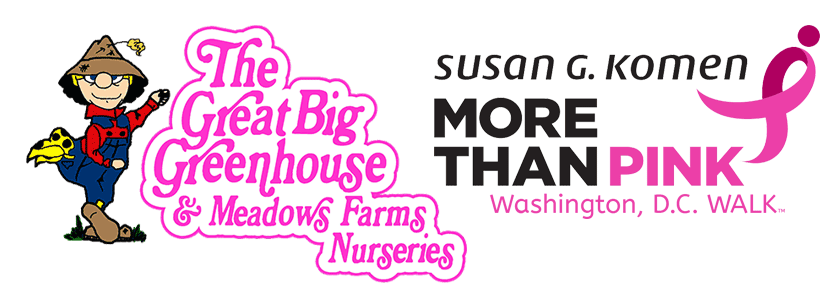 The Great Big Greenhouse and Susan G. Komen More Than Pink Walk in Washington, D.C.