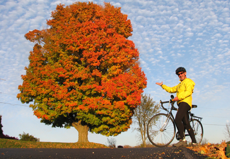 Scenic Bike Rides for Fall