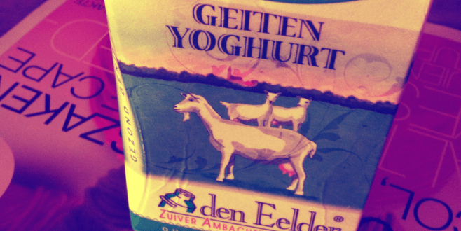 Goat yogurt. Okay for lactose intolerant people?