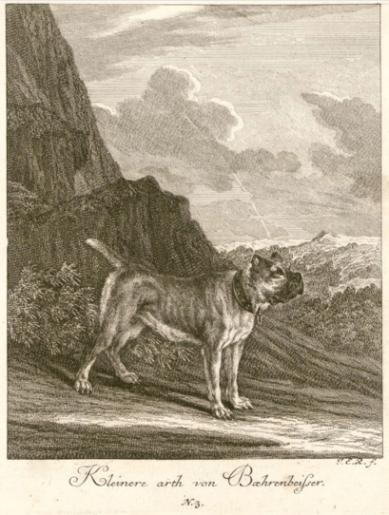 J. E. Ridinger 1738