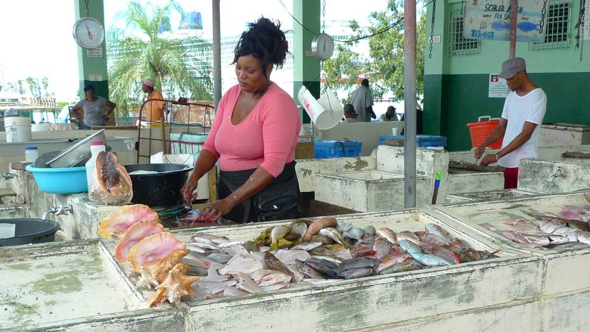 Antigua-st-johns-fish-market